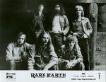 Rare-earth-2