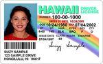 Hawaii_drivers_license1